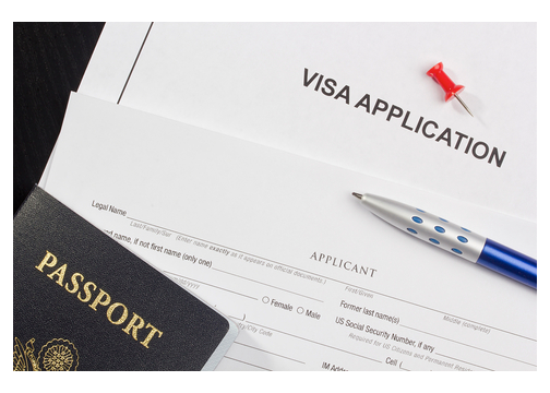 Blank visa application