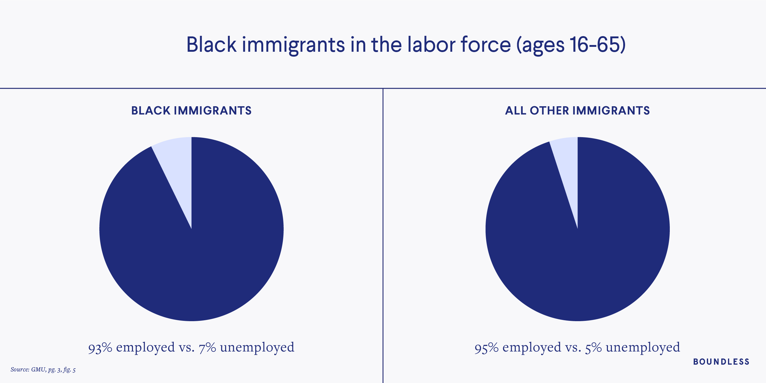 Black immigrants in the labor force