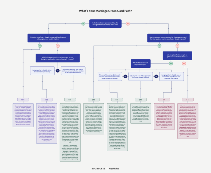 Immigration Flow Chart Preview